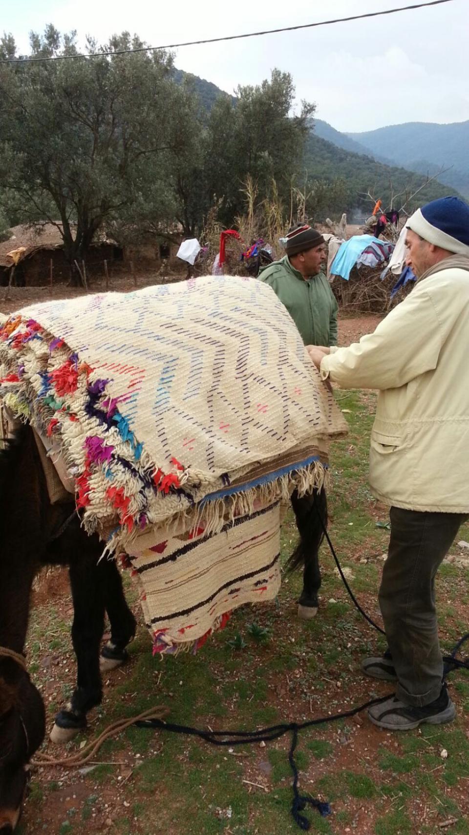 Transport de tapis dans les montagnes Berbères